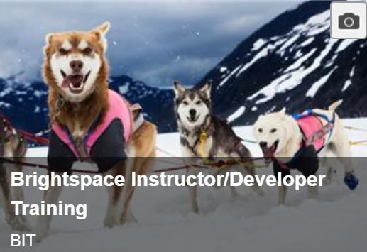 Brightspace Instructor Training